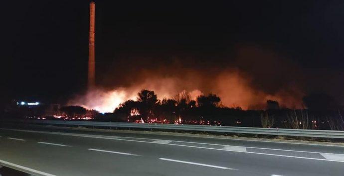 Incendio distrugge l'oasi WWF di Saline Joniche