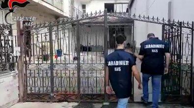 Casa di cura abusiva in una parrocchia di Oppido: indagato il parroco