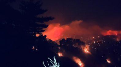 Incendi, nuova notte di fuoco in Aspromonte. Fiamme verso Montalto