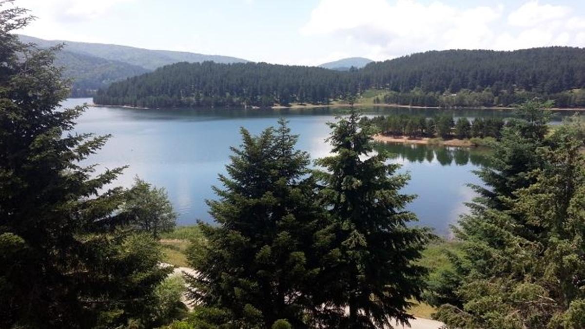 Nuoto: a Lorica bella prova di sport nella tre giorni in acque libere