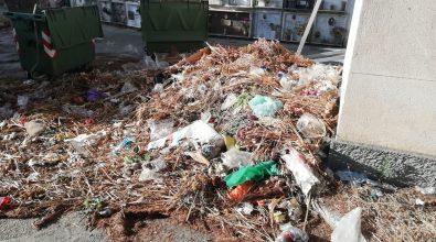 Degrado al cimitero di Condera, montagne di rifiuti abbandonate tra le tombe