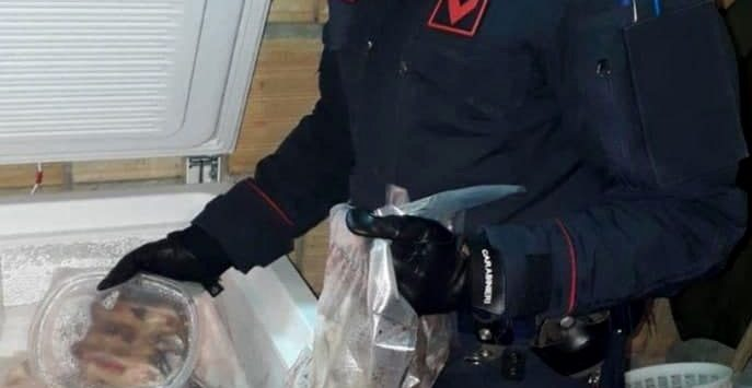 Delianuova, tre arresti per produzione di stupefacenti e cattura di animali di specie protetta